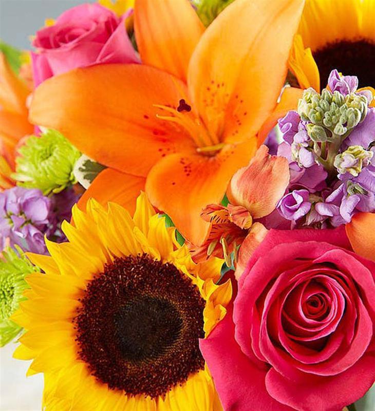 Çiçek Kucaklayışı