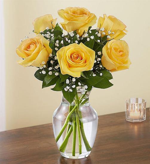 Aşk Gülleri Sarı