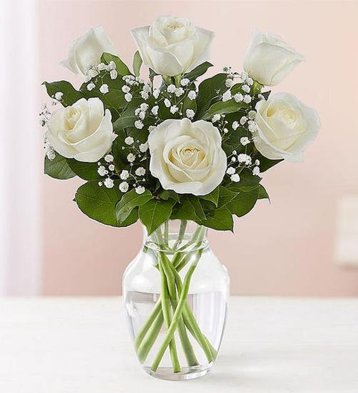 Aşk Gülleri Beyaz